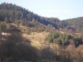 brezen010-058.jpg